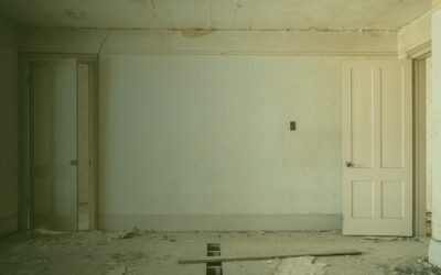 Renovation: Profiting from Real Estate